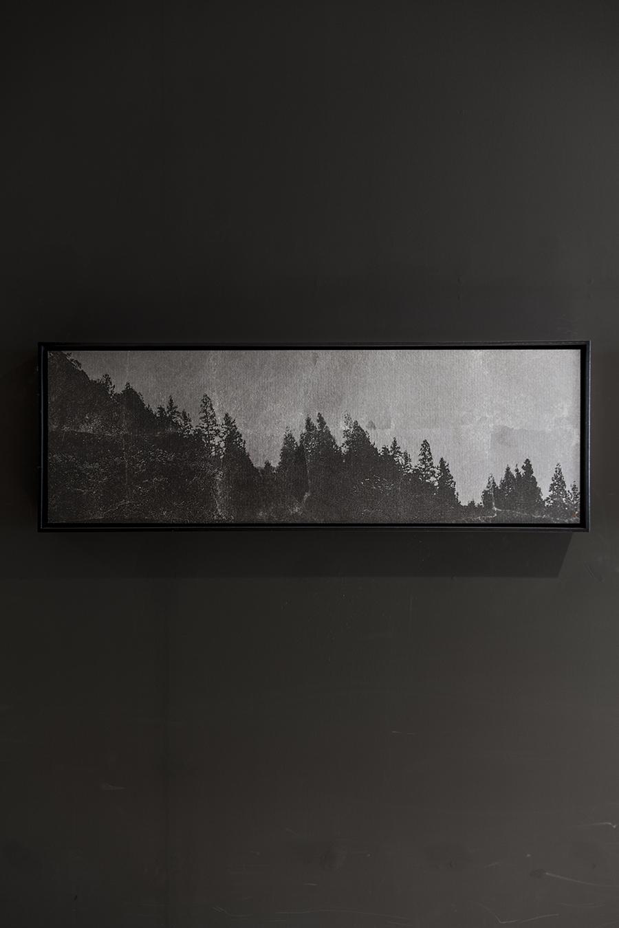 _MG_1867